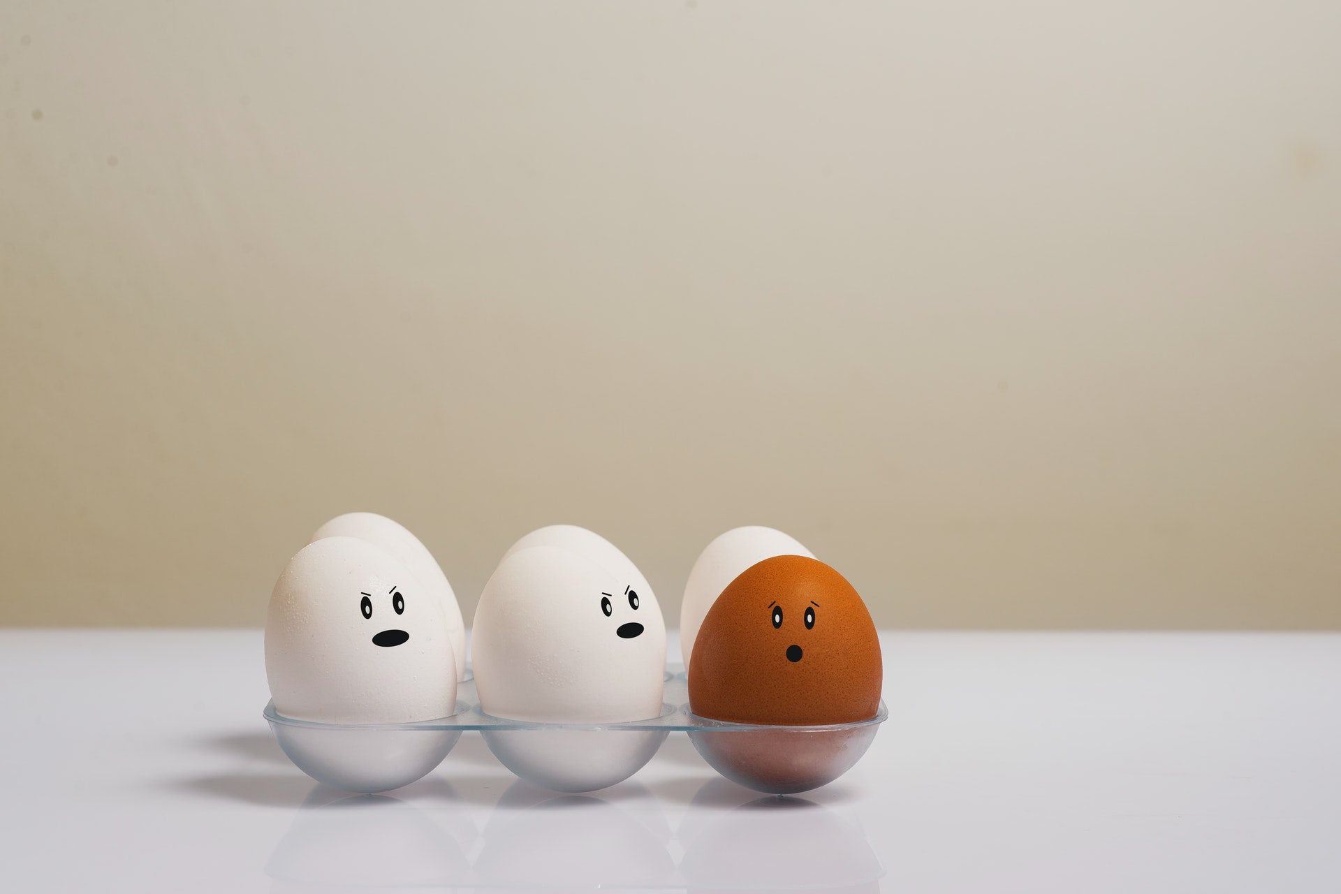 Egg Newsletters – Marketing You Can Touch